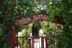 Jardín botánico Casa de la Caridad