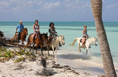 Horseback in the beach
