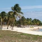 What to do in Playa Larga Cuba?