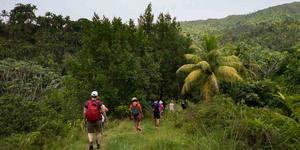 Les meilleurs itinéraires de randonnée à découvrir à Cuba