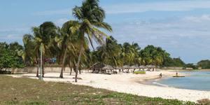 ¿Qué hacer en Playa Larga Cuba?