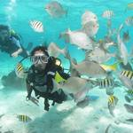 Guide to the best spots to scuba diving in Cuba