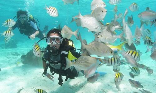 Guide de meilleurs sites pour faire la plongée sous-marine à Cuba