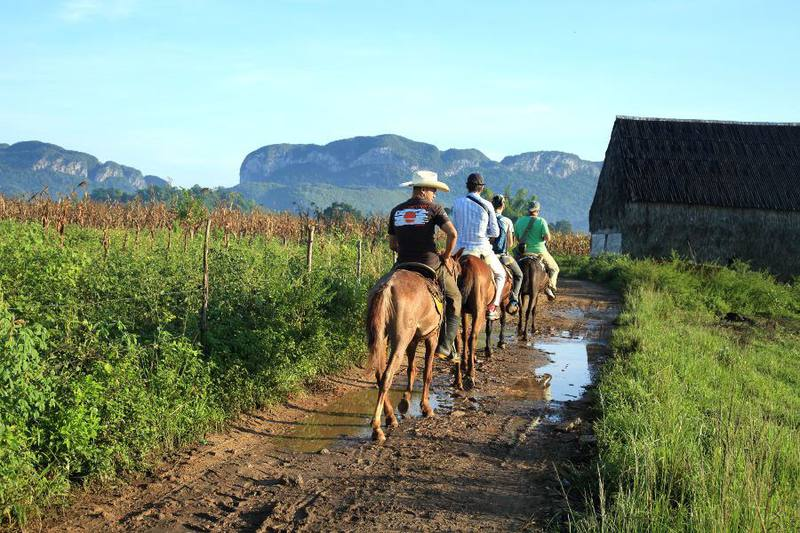 horseback tour vinales