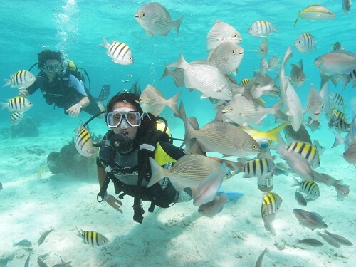 guide_to_the_best_spots_to_scuba_diving_in_cuba