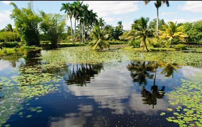 laguna Cuba